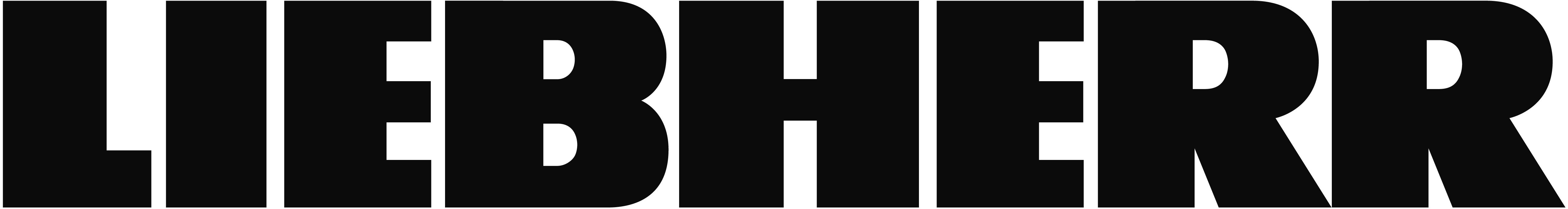 Liebherr-International Deutschland GmbH Logo